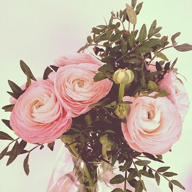 Flowersoftheday